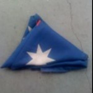 Flag Wars (cont'd)